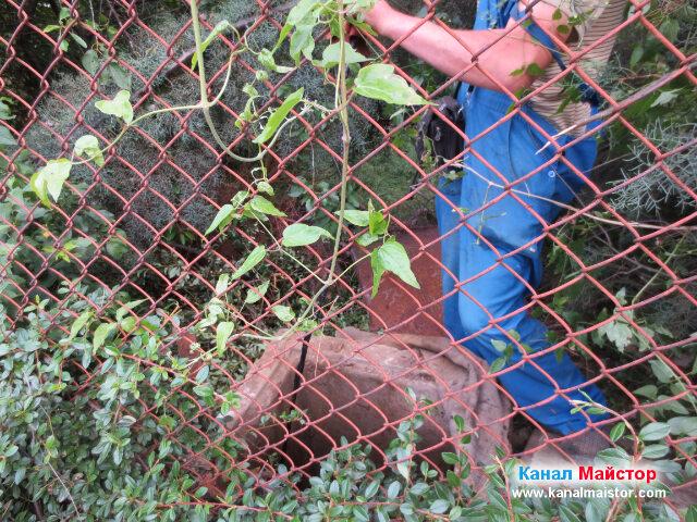 Ревизионната канализационна шахта в двора на къщата