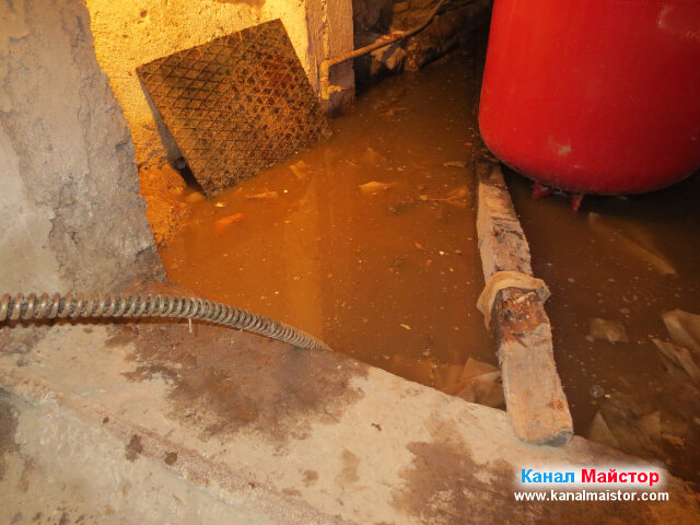 Близък план на плувналото във вода мазе