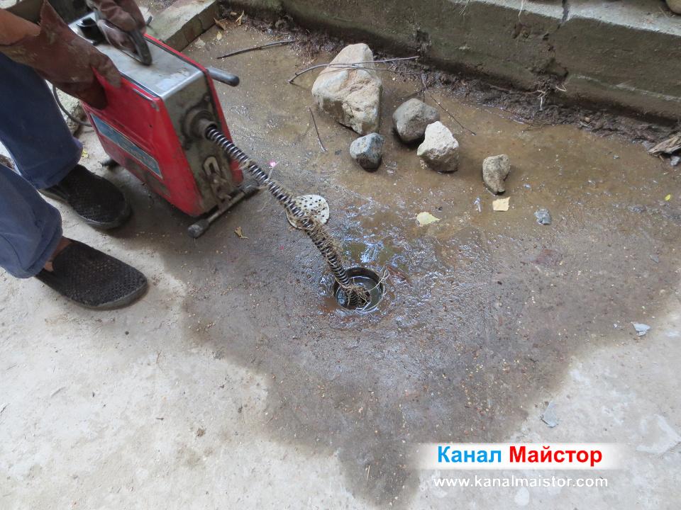 Корени от канализацията, излизат през сифона на двора