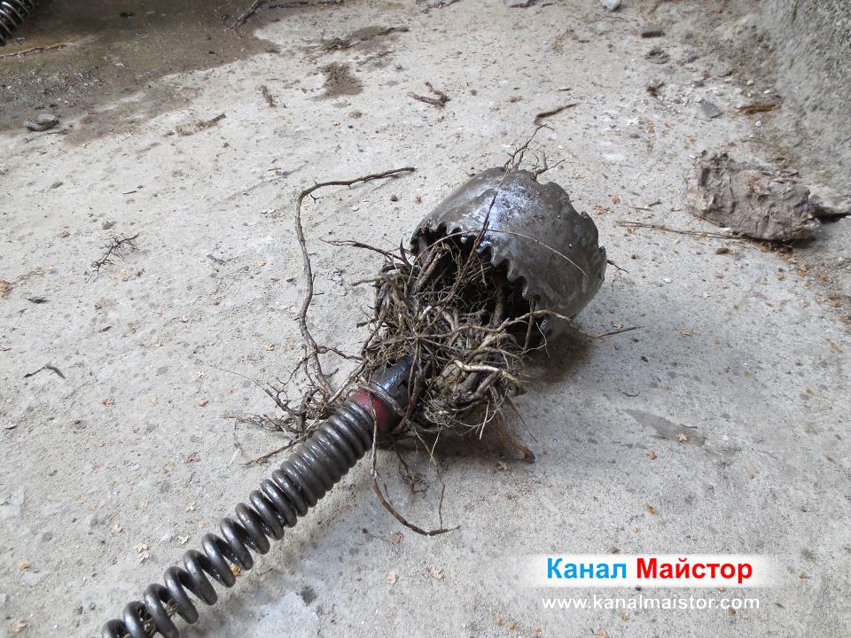 Виждате резултата от изрязването на корените в канализацията